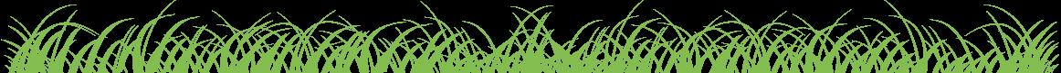 Kinderopvang opvang klazienaveen Gras